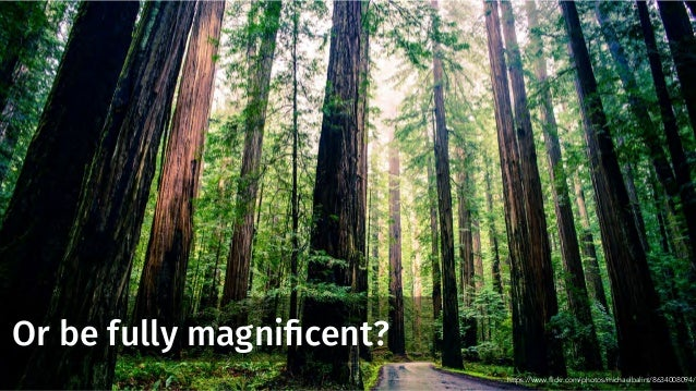 Or be fully magnificent? https://www.flickr.com/photos/michaelbalint/8634008094/