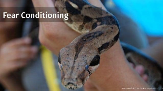 Fear Conditioning https://www.flickr.com/photos/jeremyiah/3042291231/