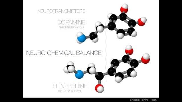 DOPAMINE EPINEPHRINE NEUROTRANSMITTERS THE 'SEEKER' IN YOU THE 'KEEPER' IN YOU NEURO CHEMICAL BALANCE ERIKSCHOPPEN.COM