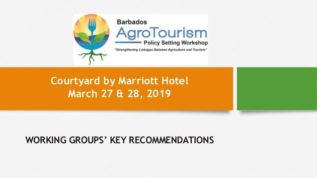 WORKING GROUPS' KEY RECOMMENDATIONS Courtyard by Marriott Hotel March 27 & 28, 2019