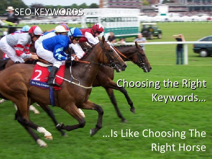 Choosing the Right Keywords… … Is Like Choosing The Right Horse SEO KEYWORDS