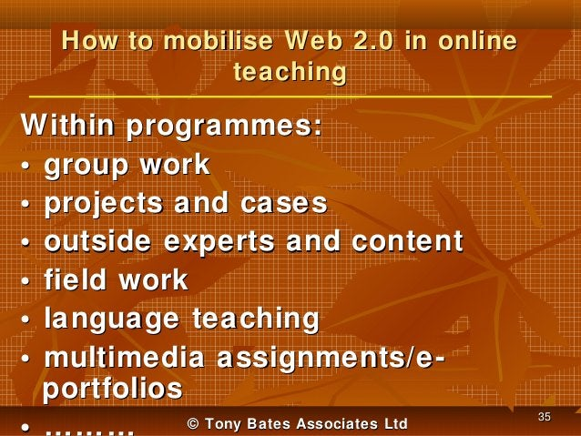 How to mobilise Web 2.0 in online teaching  Within programmes: • group work • projects and cases • outside experts and con...