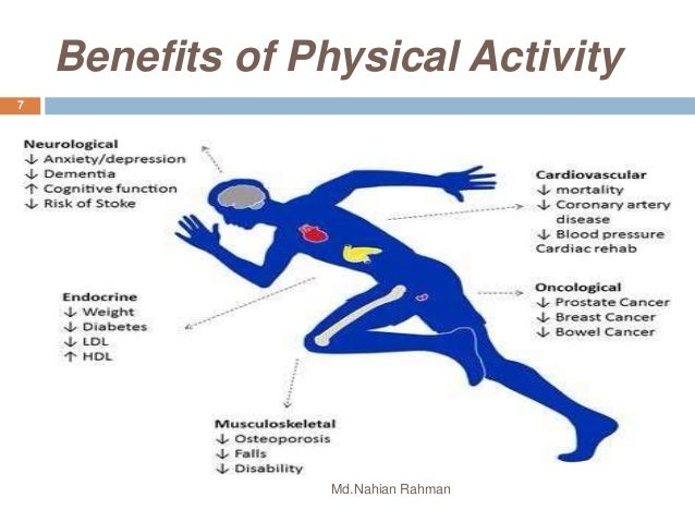 benefits of physical exercise There are spiritual benefits to physical exercise that go beyond staying awake during your pastor's sermon the bible says your body is a temple for the holy spirit (1 corinthians 6:19) if your body is the temple, then your brain may very well be the throne room.