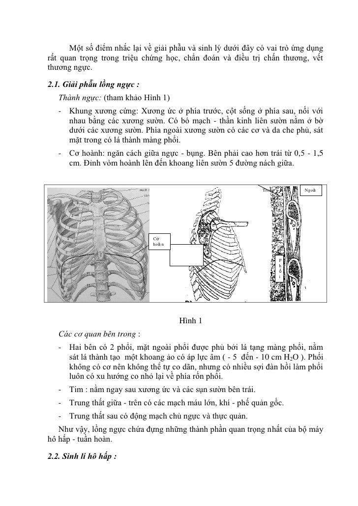 Một số điểm nhắc lại về giải phẫu và sinh lý dưới đây có vai trò ứng dụngrất quan trọng trong triệu chứng học, chẩn đoán v...