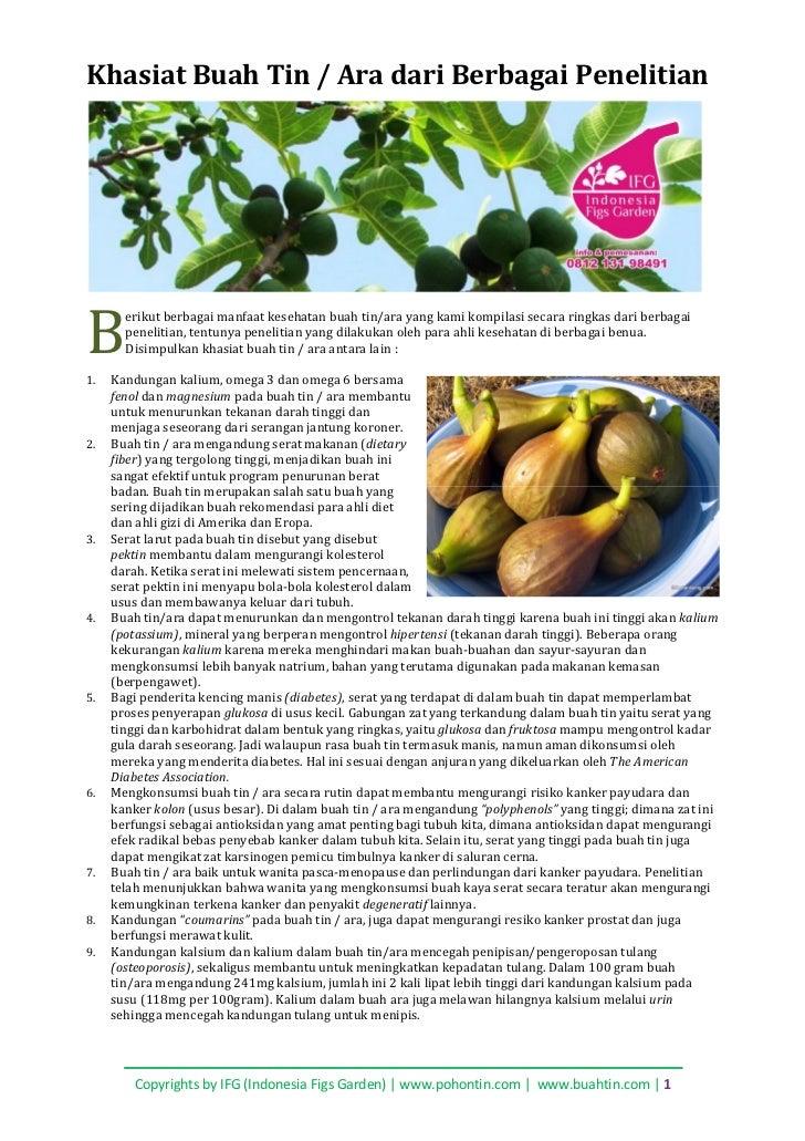 Khasiat Buah Tin / Ara dari Berbagai PenelitianB1.       erikut berbagai manfaat kesehatan buah tin/ara yang kami kompilas...