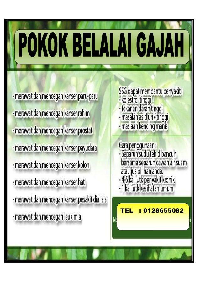 Novel Kambing Jantan Pdf
