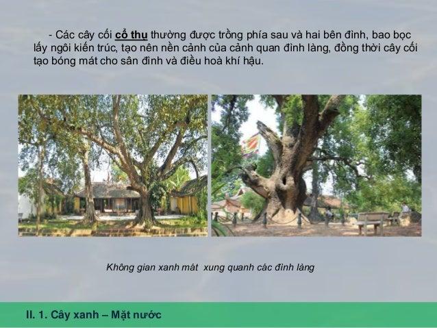 II. 1. Cây xanh – Mặt nước - Các cây cối cổ thụ thường được trồng phía sau và hai bên đình, bao bọc lấy ngôi kiến trúc, tạ...