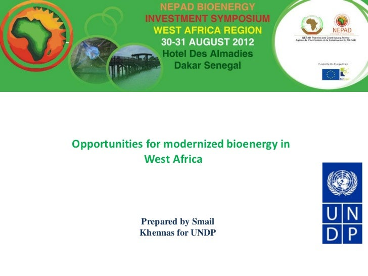 Opportunities for modernized bioenergy in             West Africa            Prepared by Smail            Khennas for UNDP