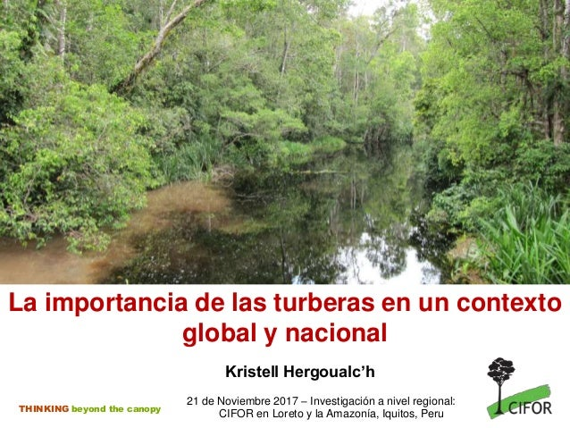 THINKING beyond the canopy La importancia de las turberas en un contexto global y nacional Kristell Hergoualc'h 21 de Novi...