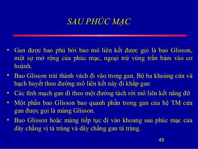 SAU PHÚC MẠCSAU PHÚC MẠC • Gan được bao phủ bởi bao mô liên kết được gọi là bao Glisson, một sự mở rộng của phúc mạc, ngoạ...
