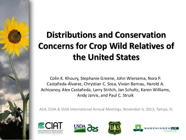 photo- Kasia Stepien  Distributions and Conservation Concerns for Crop Wild Relatives of the United States Colin K. Khoury...