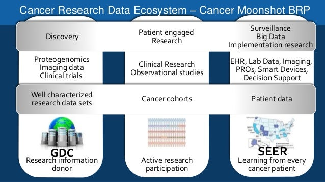 cancer and reproducibility of decisions Reproducibility in preclinical research [5], both science [6] and nature [7] have featured recent editorials on reproducibility, and several authors have noted the issues of utilizing big data for public health [8], but few methods exist to ensure that big data resources.
