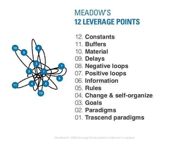 12. Constants 11. Buffers 10. Material 09. Delays 08. Negative loops 07. Positive loops 06. Information 05. Rules 04. Chan...