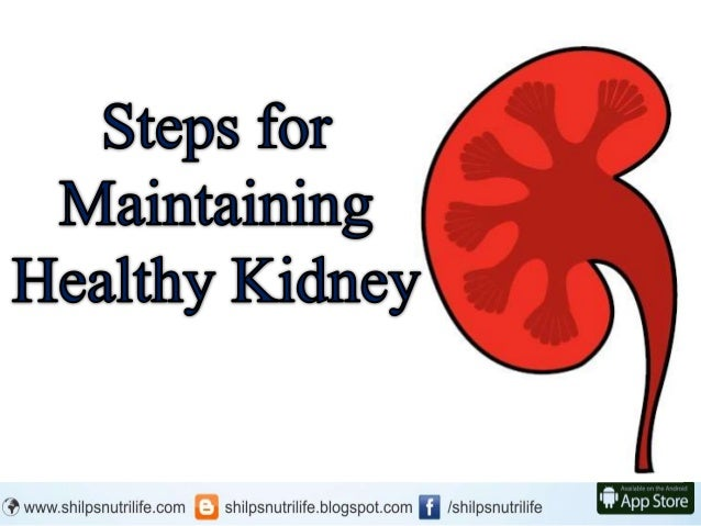 Steps for maintaining a Healthy Kidney Slide 2