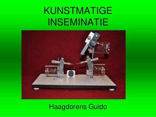 KUNSTMATIGE INSEMINATIEHaagdorens Guido