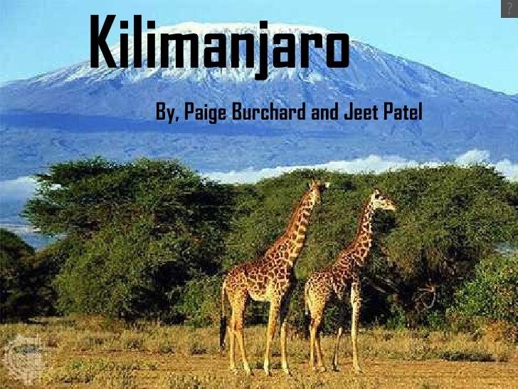 Kilimanjaro By, Paige Burchard and Jeet Patel