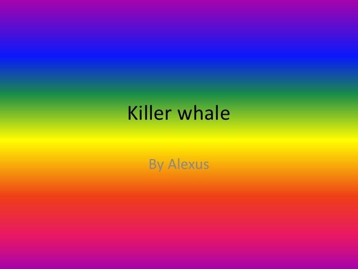 Killer whale<br />By Alexus<br />