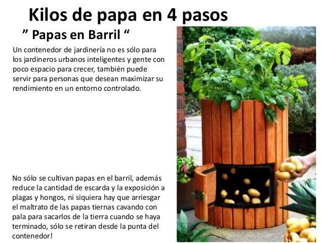 """Kilos de papa en 4 pasos """" Papas en Barril """" No sólo se cultivan papas en el barril, además reduce la cantidad de escarda ..."""