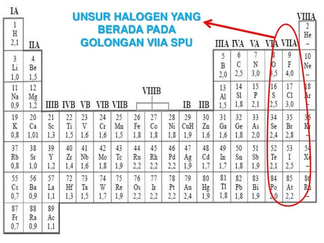 Unsur unsur halogen unsur halogen yang berada pada golongan viia spu urtaz Images