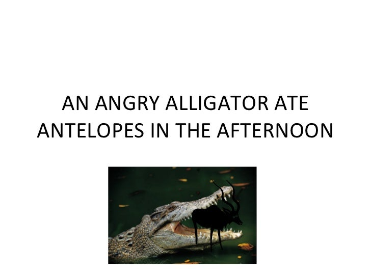 AN ANGRY ALLIGATOR ATE ANTELOPES IN THE AFTERNOON