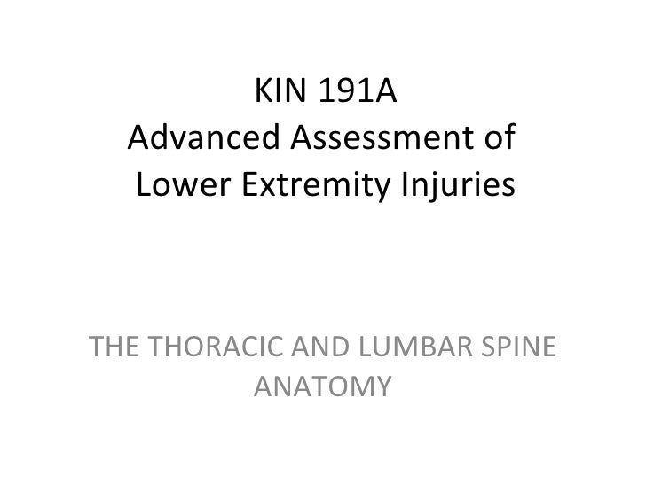 KIN 191A Advanced Assessment of  Lower Extremity Injuries THE THORACIC AND LUMBAR SPINE ANATOMY