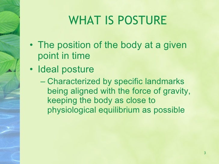 Kin191 A. Ch.3. Assessment Of Posture. Fall 2007