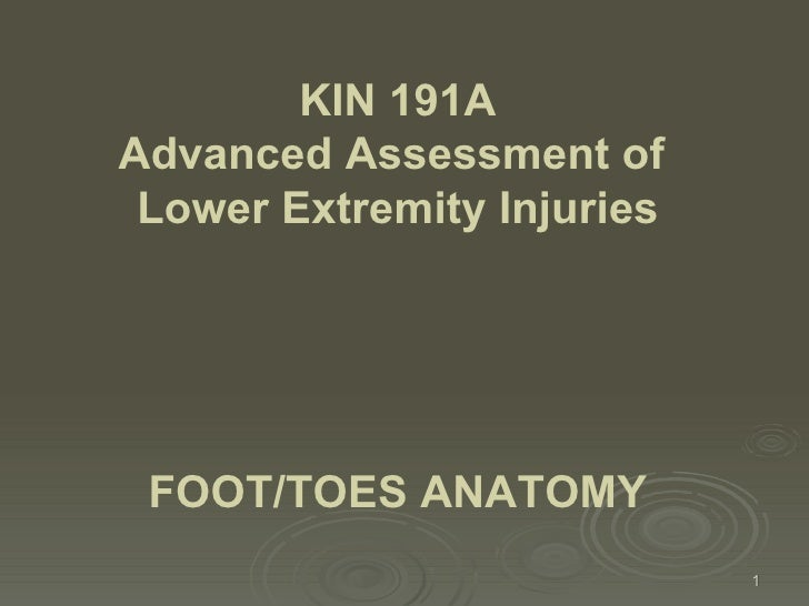 FOOT/TOES ANATOMY   KIN 191A Advanced Assessment of  Lower Extremity Injuries