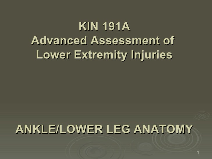 ANKLE/LOWER LEG ANATOMY   KIN 191A Advanced Assessment of  Lower Extremity Injuries