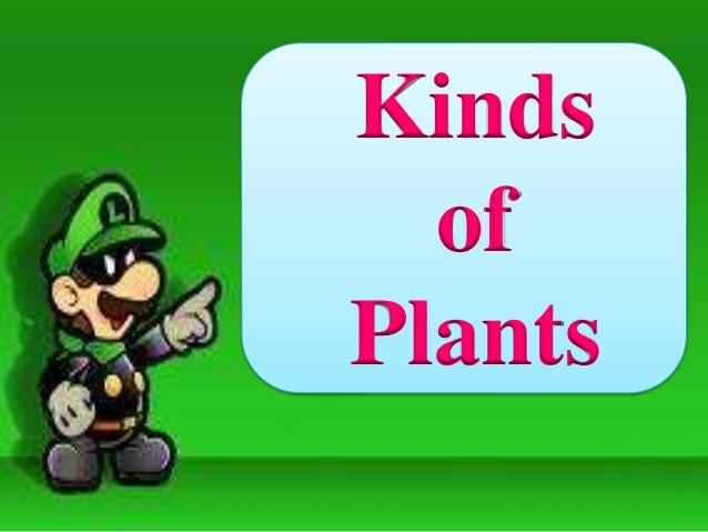 Kinds of plants for Different kinds of plants