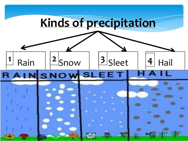 kinds of precipitation