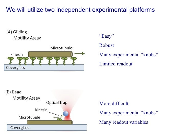 """We will utilize two independent experimental platforms """" Easy"""" Robust Many experimental """"knobs"""" Limited readout More diffi..."""