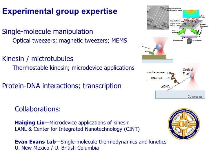 Experimental group expertise <ul><li>Single-molecule manipulation </li></ul><ul><ul><li>Optical tweezers; magnetic tweezer...