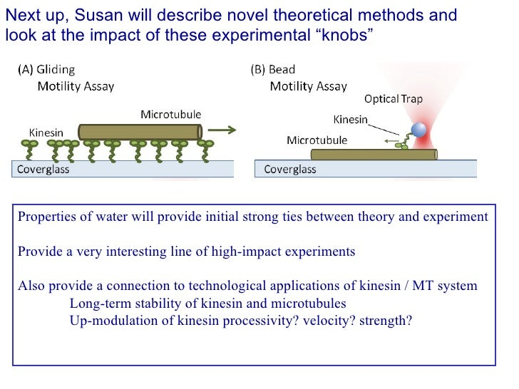 """Next up, Susan will describe novel theoretical methods and look at the impact of these experimental """"knobs"""" Properties of ..."""