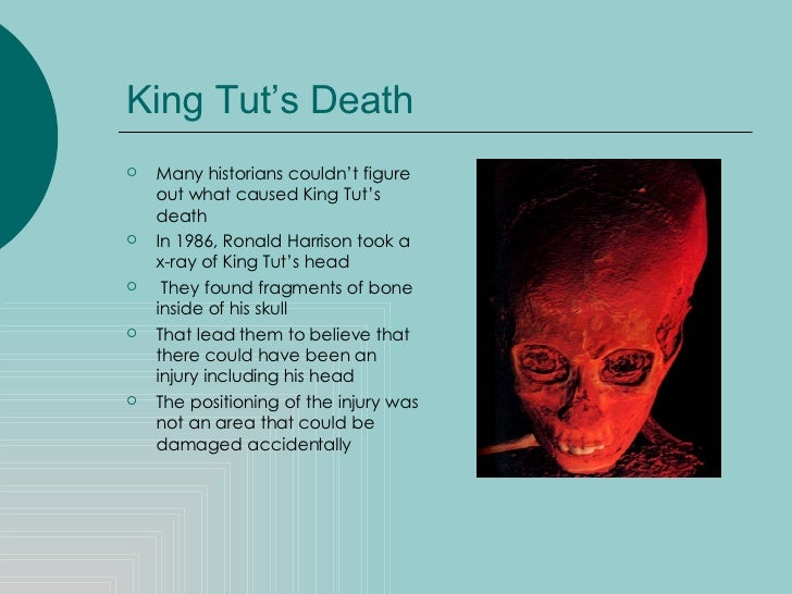 King Tut s Cultural Influence  From Steve Martin to Downton Abbey     ELMENS