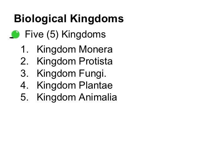 Image of: Mcat Biology Biological Kingdoms Studylibnet Kingdom Animalia