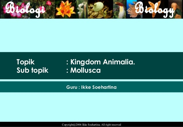 Topik          : Kingdom Animalia.Sub topik      : Mollusca               Guru : Ikke Soehartina            Copyright@2006...