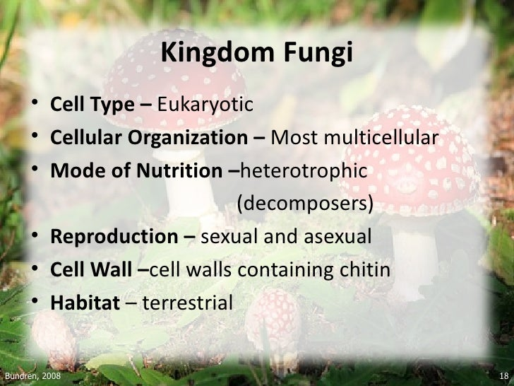 Six kingdoms of classification asexual and sexual reproduction