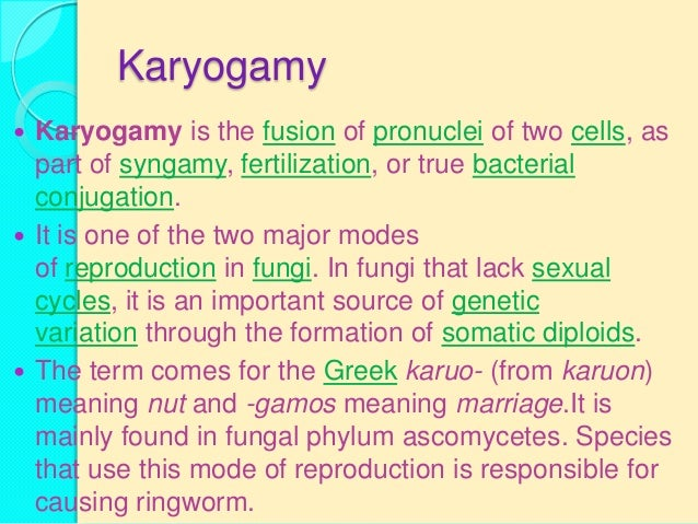 Conjugation differs from reproduction because conjugation