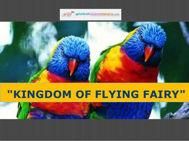 """""""KINGDOM OF FLYING FAIRY"""""""