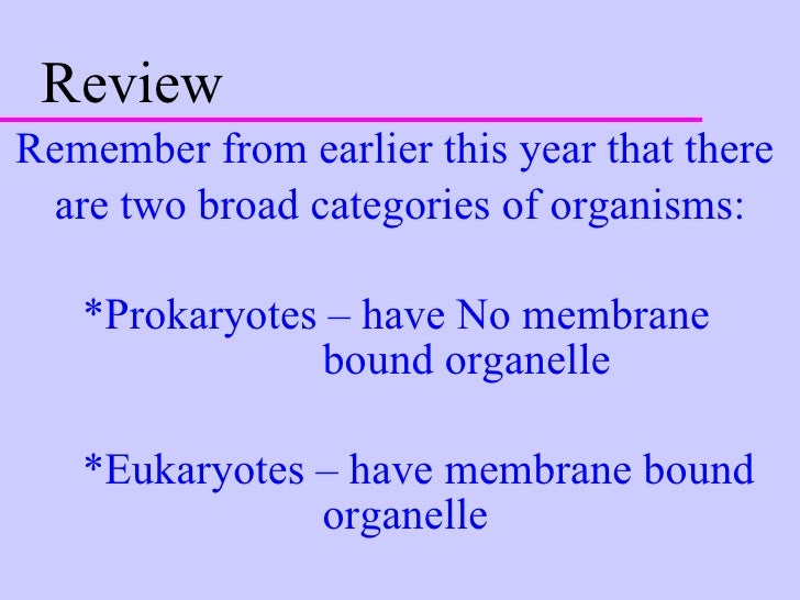 Review <ul><li>Remember from earlier this year that there  </li></ul><ul><li>are two broad categories of organisms: </li><...