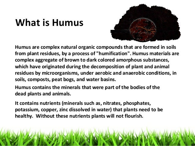 King humus plus presentation by kim c gabuya for What is soil