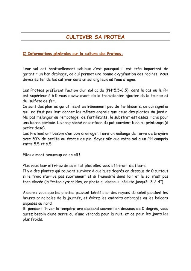 CULTIVER SA PROTEA I) Informations générales sur la culture des Proteas:  garantir un bon drainage, ce qui permet une bonn...