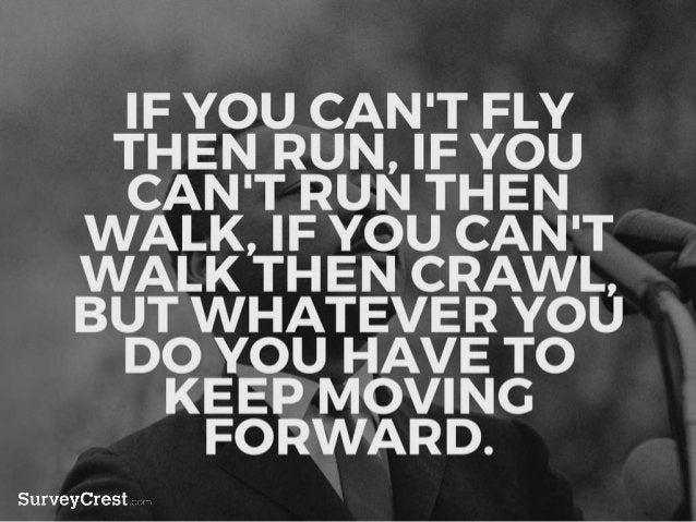 IF YOU CAN'T FLY THEN RUN, IF YOU C AN'T RUN THEN WALK, IF YOU CAN'T WALK THEN CRAWL, BUT WHATEVER YOU DO YOU HAVE TO KEEP...