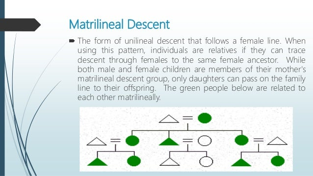 Descent Patrilineal Kinship Diagram Car Wiring Diagrams Explained