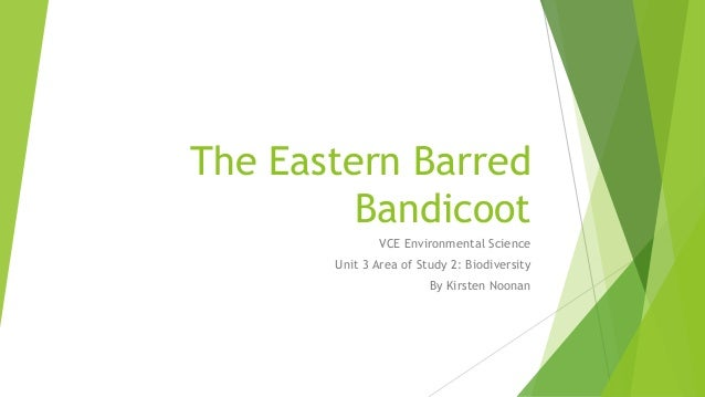 The Eastern Barred Bandicoot VCE Environmental Science Unit 3 Area of Study 2: Biodiversity By Kirsten Noonan