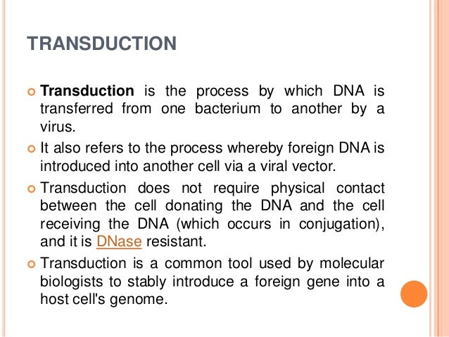 conjugation transformation and transduction Transformation in which dna is taken up from the environment conjugation in  which  transduction in which the transfer of dna from one bacteria to another is .
