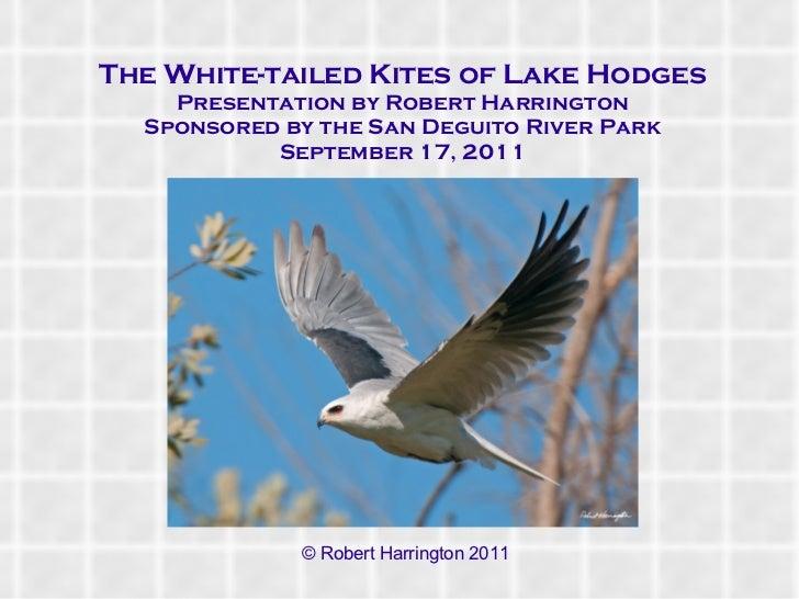 <ul>The White-tailed Kites of Lake Hodges Presentation by Robert Harrington <li>Sponsored by the San Deguito River Park Se...