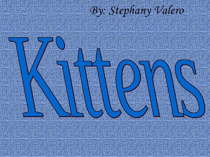 By: Stephany Valero Kittens