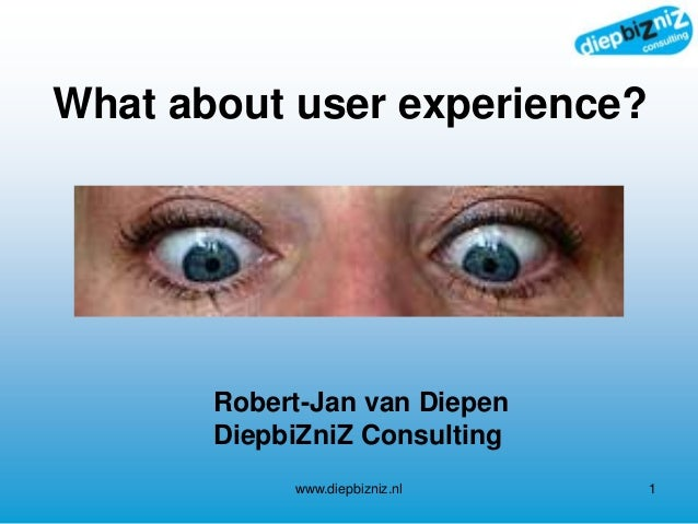What about user experience? www.diepbizniz.nl 1 Robert-Jan van Diepen DiepbiZniZ Consulting