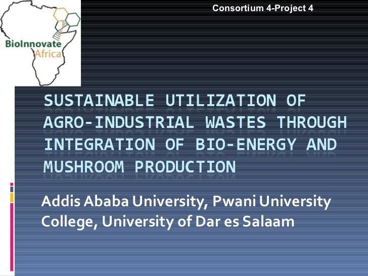 Addis Ababa University, Pwani University College, University of Dar es Salaam Consortium 4-Project 4